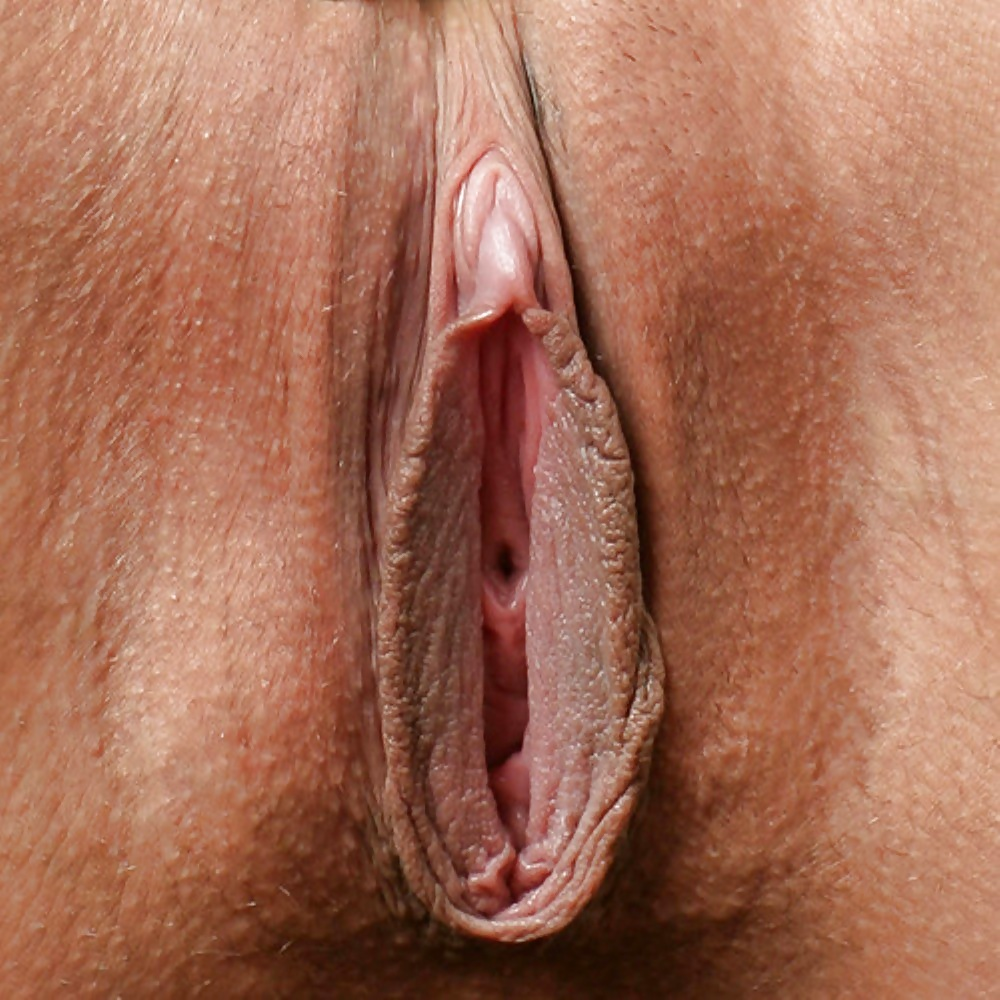 Big labia gallery